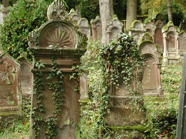 The Jewish cemetery of Mühringen